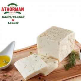 Ezine Peyniri (Tam Yağlı) Kg