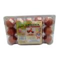 Zeybek Organik Tavuk Yumurtası 15'Li