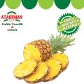 Ananas Adet